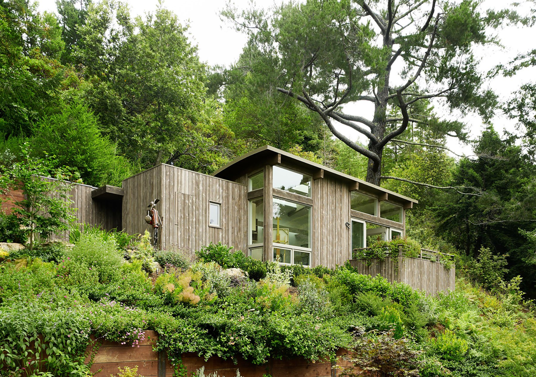 Mill valley cabins by feldman architecture for Feldman architecture