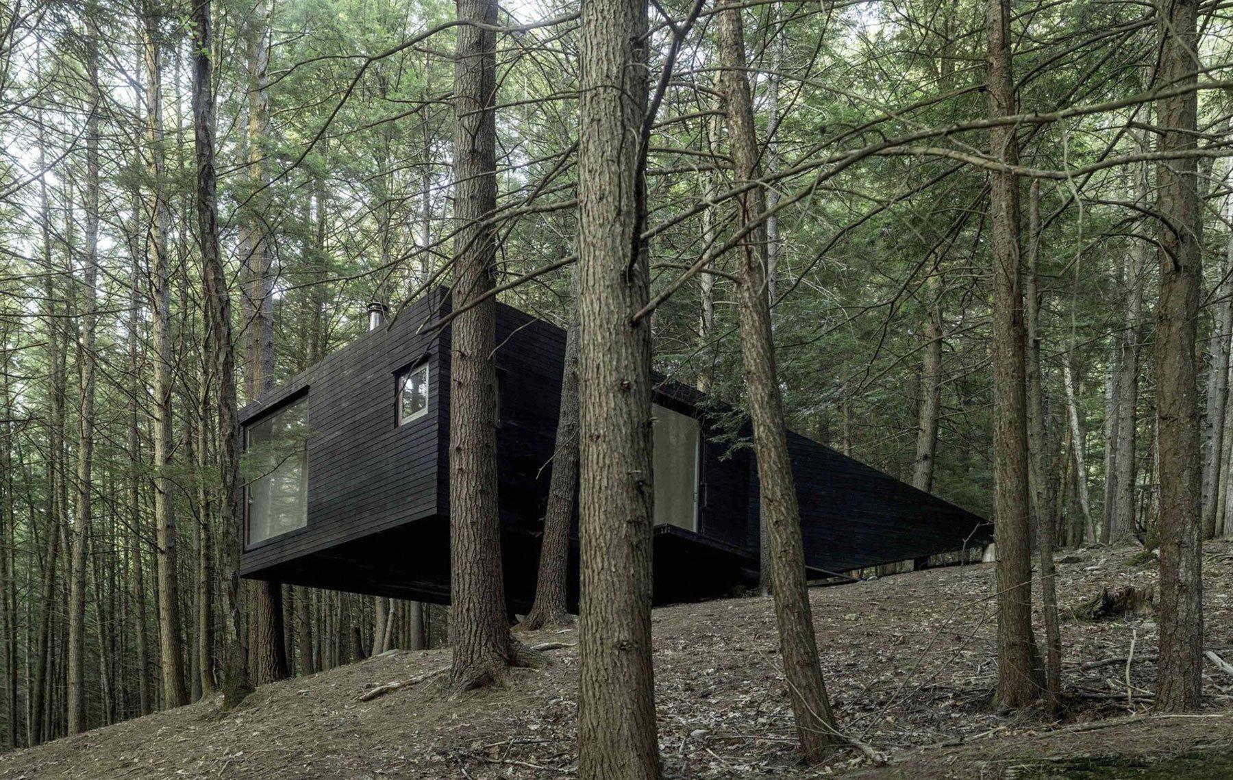 A Minimalist Cabin Design Half Tree House